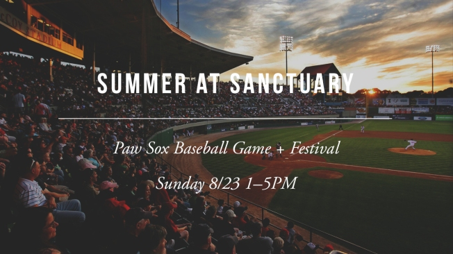 [SLIDE] Paw Sox Game 1280x720