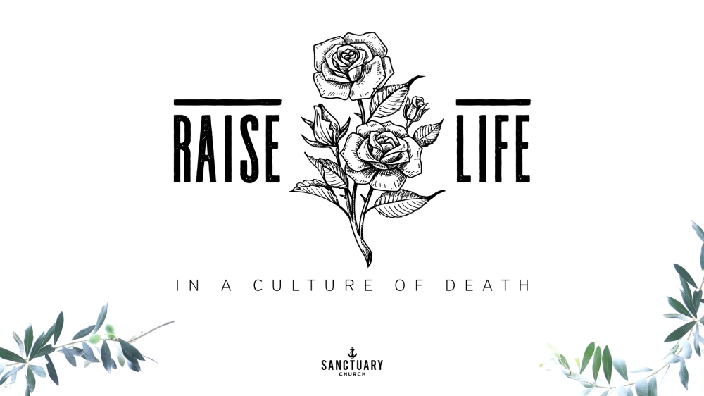 [SLIDE] Raise Life 2017 Title 1920x1080